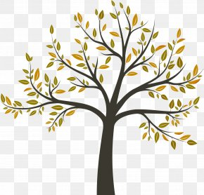 Tree - Tree Arborist Arboriculture PNG