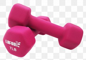 Yoga Dumbbells - Dumbbell Physical Exercise Weight Training PNG