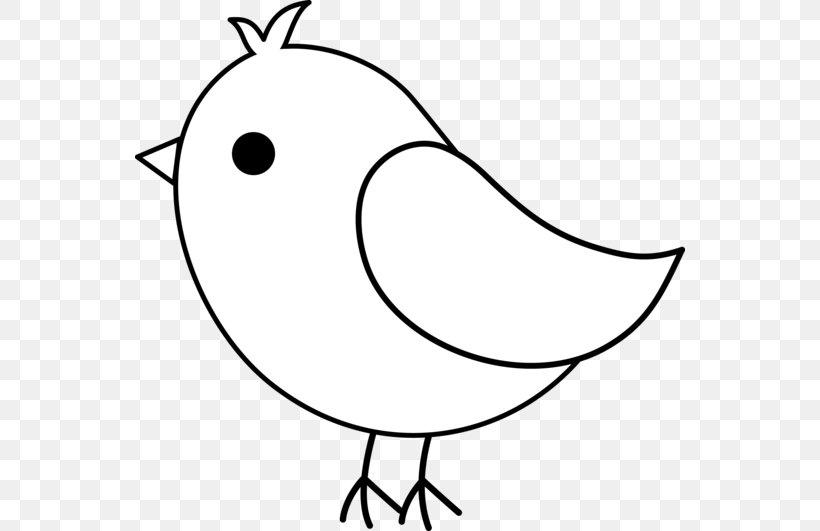 Bird Drawing Line Art Pencil Sketch Png 550x531px Bird Beak