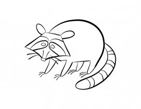 Raccoon Pictures For Kids - Baby Raccoon Coloring Book Child Clip Art PNG