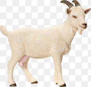 Tw - Nigerian Dwarf Goat Sheep Schleich Toy Amazon.com PNG