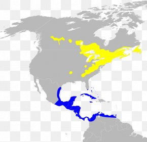 United States - United States South America Latin America Central America Cultural Region PNG