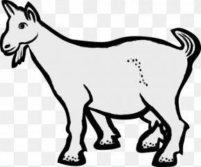 Clip Art Vector Graphics Boer Goat Openclipart PNG