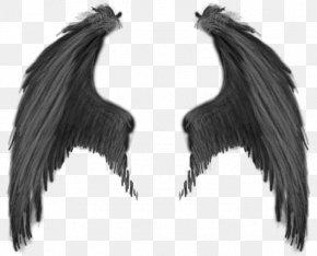 Wings - Demon Devil Angel PNG
