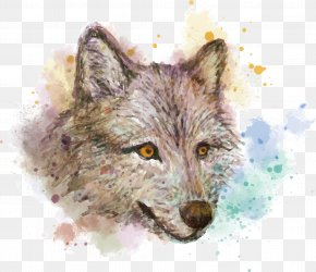 Vector Hand Painted Watercolor Wolf - Gray Wolf Watercolor Painting Red Fox Drawing PNG