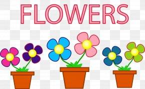 Pots - Flower Floral Design Stock Photography PNG