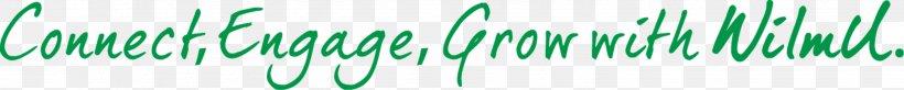 Desktop Wallpaper Grasses Computer Line Font, PNG, 2985x300px, Grasses, Closeup, Computer, Family, Grass Download Free