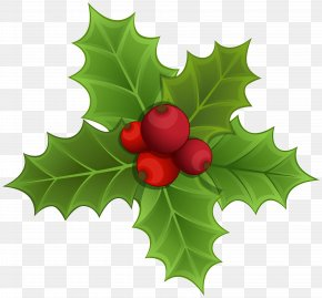 Mistletoe Clipart Image - Mistletoe Christmas Clip Art PNG