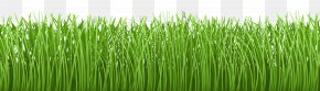 Grass Ground Cover Transparent Clip Art Image - Lawn Groundcover Clip Art PNG