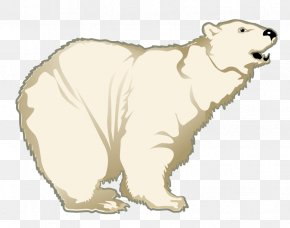 Polar White Bear - Polar Bear Dog Clip Art PNG