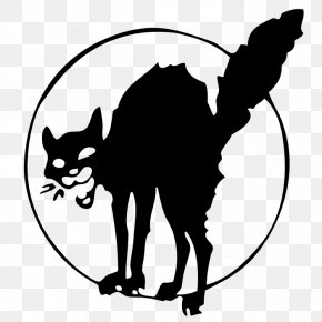 Cat - Black Cat Anarchism Wildcat Industrial Workers Of The World PNG