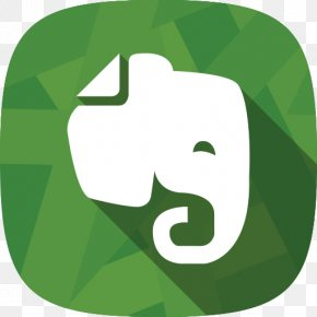 Evernote Vector Drawing - Download File Synchronization PNG