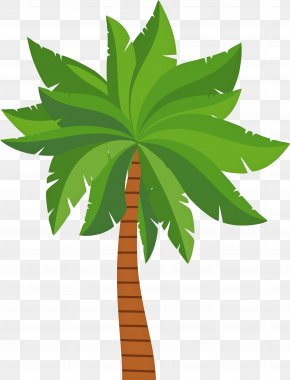 Flowerpot Vascular Plant - Palm Tree Background PNG