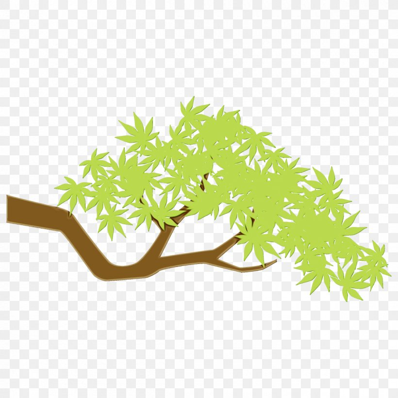 Green Leaf Plant Branch Tree, PNG, 1200x1200px, Watercolor, Aquarium Decor, Branch, Flower, Grass Download Free