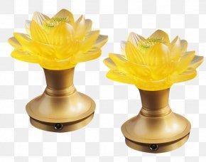 Coloured Lotus Lamp - Lamp Lantern PNG