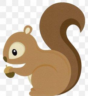 Squirrel - Eastern Gray Squirrel Cuteness Clip Art PNG