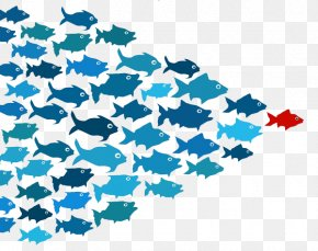 School Of Fish Transparent - Leadership Development Thought Leader Management Business PNG