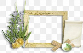 Picture Frames Borders And Frames Floral Design Clip Art PNG