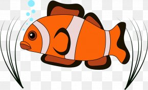 Baby Fishes Aquarium - Image Vector Graphics Clown Saltwater Fish PNG