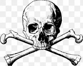 Skull - Skull And Bones Human Skull Symbolism Skull And Crossbones Clip Art PNG