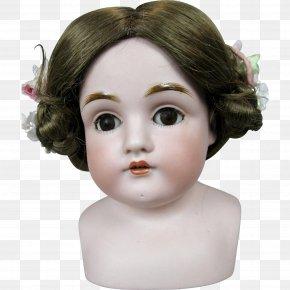 Doll - Forehead Cheek Chin Eyebrow Doll PNG