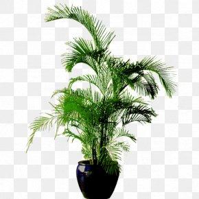 Green Flower Pot - Flowerpot Bonsai Download PNG