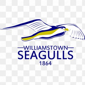 Seagull Graphics - Arrow Material Services, LLC Logistics Industry Business Transloading PNG