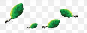 Ants Move Leaves - Ant Download Labor Computer File PNG