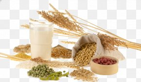 Autumn Harvest Food - Dietary Supplement Food Nutrition Cereal Eating PNG