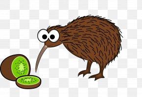 Kiwi - New Zealand Bird Animation Clip Art PNG