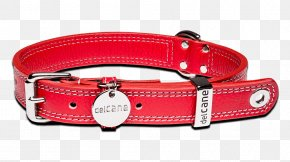 Dog Collar - Dog Collar Dog Collar Cat Leash PNG