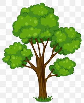 Tree Clip Art - Tree Cartoon Clip Art PNG
