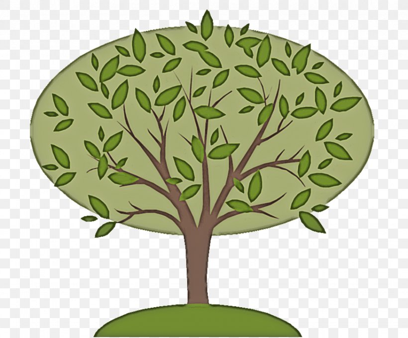 Tree Green Leaf Plant Woody Plant, PNG, 872x724px, Tree, Branch, Flower, Green, Leaf Download Free