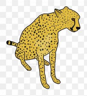 Cheetah - Cheetah Leopard Jaguar Lion Cat PNG