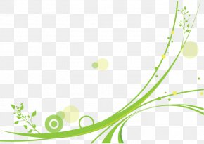 Fresh Pattern - Circle Pattern PNG