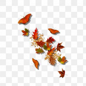 Monarch Butterfly Wing - Watercolor Background Autumn Frame PNG