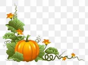 Pumpkin Decor Clipart - Thanksgiving Pumpkin Clip Art PNG