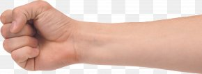 Hands , Hand Image Free - Hand Forearm Clip Art PNG