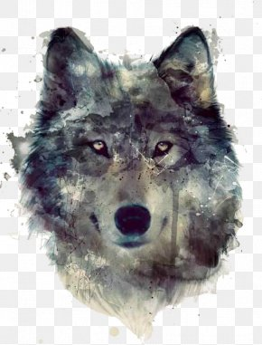Painting - Gray Wolf Watercolor Painting Art Drawing PNG