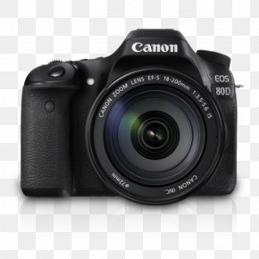 Image-stabilized Binoculars - Canon EOS 80D Canon EF-S 18–55mm Lens Canon EOS 77D Digital SLR PNG