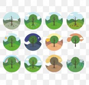 Round Tree Icon - Circle Icon PNG