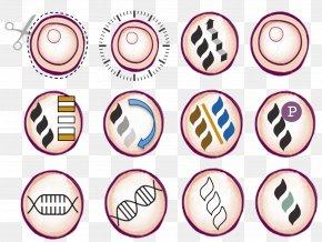 Abundance Pattern - Product Design Font Line Purple PNG