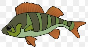 Bass Fish Drawing Clip Art - Tropical Fish Clip Art Fried Fish PNG