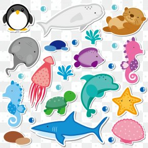 Marine Animals Collection PNG