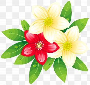 Frangipani - New Year's Day Wish Greeting & Note Cards Happiness PNG