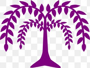 Willow Tree - Weeping Willow Tree Drawing Clip Art PNG