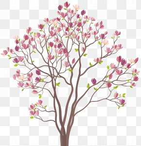 Mmagnolia Tree Clip Art Image - Southern Magnolia Tree Royalty-free Clip Art PNG