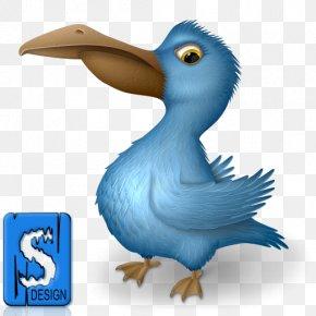 Bird - Bird Pelican Clip Art PNG