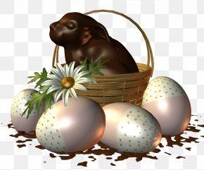 Easter Egg Hunt - Easter Egg PNG