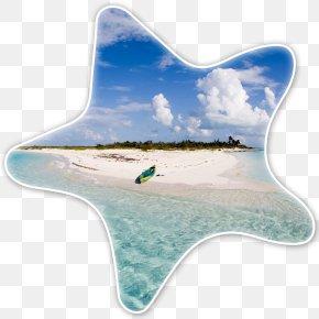 Paradise Beach - Eleuthera Long Island Nassau Harbour Island, Bahamas Stocking Island PNG